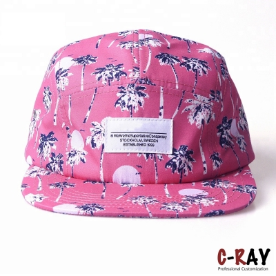 Fashionable casual 5 panel hat cap/casual 5 panel cap hat
